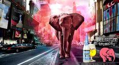 All Beers: Campanha da Delirium Tremens em 3D