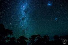 Ilha Canguru, Sul da Austrália