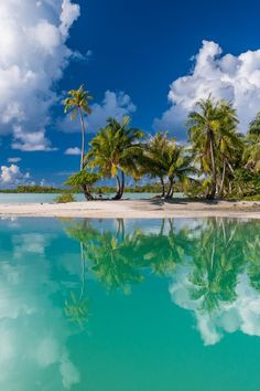 Out of this World Goin Coastal, Waves On The Beach, Green Ocean, Island Girl, Salt And Water, Travel Bugs, Out Of This World, French Polynesia, Tahiti