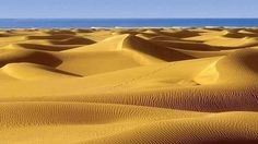 Not the Sahara desert, but somewhere tucked away in the Canary Islands via @Serpentina3 pic.twitter.com/647sQUM7Ga