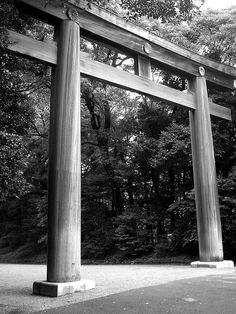 Torii gate of Meiji Shrine, Tokyo, Japan 明治神宮