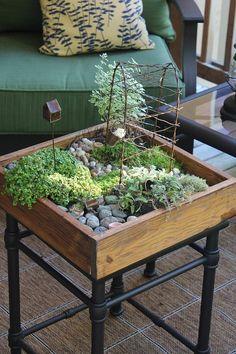 mini jardin zen à la maison