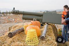 /i/pumpkin_blaster_3.jpg
