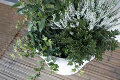 Syysistutus Outdoor Decor, Flower Garden, Plants, Fall Flowers, Back Gardens, Outdoor Gardens, Perennials, Shrubs, Flowers