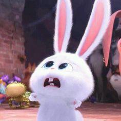 RIP- Ricky hahaha The secret life of pets -snowball Cute Bunny Cartoon, Cute Cartoon Pictures, Cute Disney Wallpaper, Cute Cartoon Wallpapers, Snowball Rabbit, Rabbit Wallpaper, Pets Movie, Secret Life Of Pets, Pet Rabbit