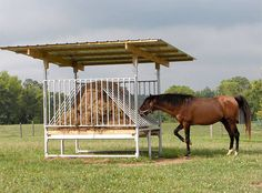 Hay Saver Feeder for Horses