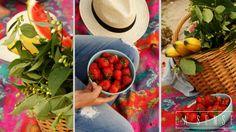 Picnic#Gdynia#strawberries#picnic basket#jeans#