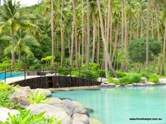 Swimming Pool surrounded by lush tropical surroundings at Laucla Island, Fiji