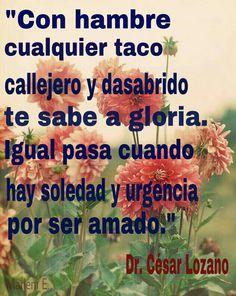"""""""Con hambre cualquier taco callejero y desabrido te sabe a gloria. Igual pasa cuando hay soledad y urgencia por ser amado."""" Dr. Césara Lozano"""