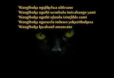 Zulu, Love Quotes, Simple Love Quotes, Zulu Language, Quotes Love, Love Crush Quotes, Quotes About Love, In Love Quotes