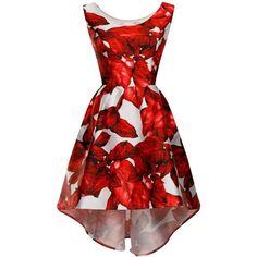 Chi Chi London Botanical Floral Print Dip Hem dress ($85) ❤ liked on Polyvore featuring dresses, red, women, v neck dress, collar dress, floral high low dress, high low dresses and hi lo dresses