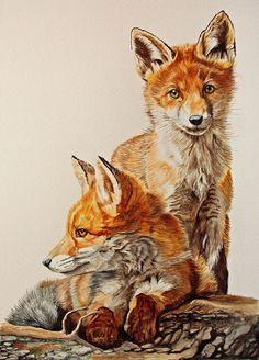 Watercolor Paintings Of Animals, Watercolor Artwork, Animal Paintings, Art Drawings Sketches, Animal Drawings, Fox Coloring Page, Fox Drawing, Fox Illustration, Fox Art
