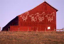 Lexington, VA.  Virginia is for Horse Lovers
