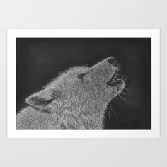 """A digital print of the original drawing """"The Howl"""" by Australia artist Tracey Lee Everington (Tracey Lee Art Designs).The artwork shows a black and white pastel and charcoal drawing of a howling wolf. Wall Art Prints, Canvas Prints, Muse Art, Wolf Howling, Black And White Drawing, Office Art, Animal Drawings, Art Blog, Vintage Posters"""