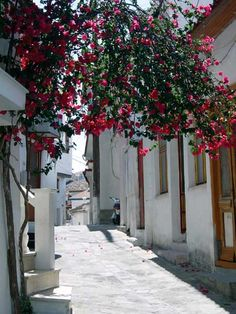 A nice alley in Pythagorion.