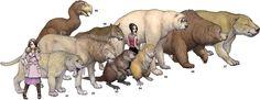 In order: Smilodon, Panthera l. atrox, Castoroides, Phoberomys, Arctodus, Ursus spelaea, Megistotherium, Homotherium, and Gastornis.