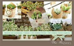 #souvenirs #casamientos #cumpleaños #bautismos #suculentas #kitsiembra #hierbas #flores #Macetas #arpillera #papel #ecologico