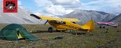 Aviat Aircraft - Makes of the Husky