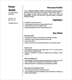 Carpenter Resume Templates Inspiration 11 Carpenter Resume Templates  Free Printable Word & Pdf  Sample .