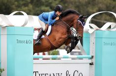 Two of my favorite things! Tiffany & Co. and a horse!