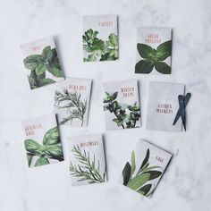 Gift boxes with herbs and edible flower seeds # colorful # . Gift boxes with Edible Flowers, Diy Flowers, Seed Packaging, Packaging Design, Herb Seeds, Garden Markers, Seed Packets, Wine Bottle Crafts, Flower Seeds