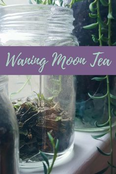 Waning Moon Tea Blend Recipe - The Witch of Lupine Hollow Homemade Tea, Kitchen Witchery, My Cup Of Tea, Tea Blends, Tea Recipes, Drink Recipes, Kraut, Herbal Medicine, Spirituality