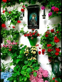 Permanent nice pots would look good in winter Spanish Patio, Spanish Home Decor, Spanish Garden, Balcony Flowers, Garden Wall Art, Home Altar, Cottage Garden Design, Patio Plants, Colorful Garden