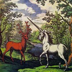 unicorn and stag #mythology #fairytale