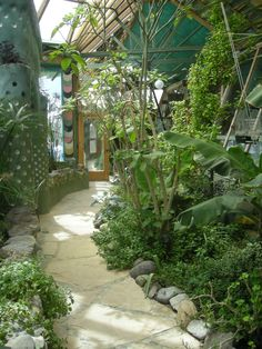 Earthship greenhouse.  Mine would have more edibles, not tropicals.  Pretty, but ya can't eat 'em.