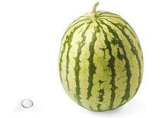 39 weeks mini-watermelon
