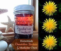 Homemade Medicinal Dandelion Tincture Remedy Recipe Homesteading - The Homestead Survival .Com