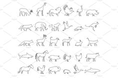 One line animals set, logos. vector stock illustration. Turkey and cow, pig and eagle, giraffe and horse, dog and cat, fox and wolf, dolphin and shark, deer and elephant, stork and chicken. by ArtBalitskiy on @creativemarket