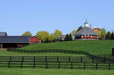 Tours of Horse Farms in Central Kentucky