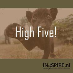 Grappige spreuken? Inspirerende spreuken, gezegden & wijsheden ★★★★★ Over succes, felicitaties, happy spreuken etc. Deel nu jouw favoriete spreuk!