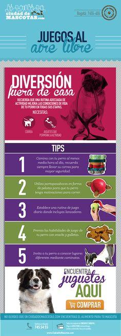 Mantener un nivel adecuado para tu perro mejora su comportamiento y su salud.