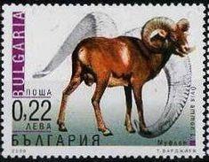 2000: Argali (Ovis ammon ammon) (בולגריה) (Adapted Animals) Mi:BG 4485,Yt:BG 3882