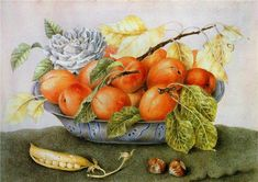 Джованна Гарцони - мега-художник эпохи барокко. - Журнал обо всём