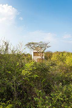 Casa Tiny à Puerto Escondido – Miluccia | Magazine d'inspiration décoration et design