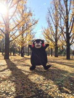 熊本熊 Korean Picture, Bts Young Forever, Frog Meme, Kawaii, Cute Bears, Cute Korean, Aesthetic Photo, Anime, Reaction Pictures