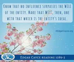 Know that no influence surpasses the WILL. Make that WILL, then, one with that which is the entity's ideal.
