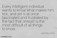 Image result for alan watts quotes