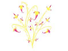Framespng: Floral