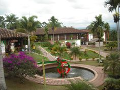 Colombian National Coffee Park