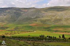 Good morning from #Bekaa صباح الخير من #البقاع By Ali Badawi  #Lebanon #WeAreLebanon