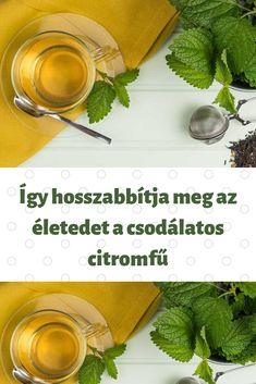 Herbs, Live, Healthy, Food, Essen, Herb, Meals, Health, Yemek