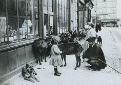 Un marchand de lait de chèvre, quelque part dans les rues de Paris, vers 1900.