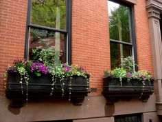 love these window boxes/ perfect with our black shutters