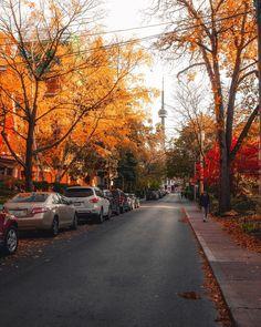 Happy Monday 🍂 Love exploring fall colours in the city streets Autumn Photography, City Photography, Toronto Ontario Canada, Toronto City, Toronto Travel, October Country, Autumn Aesthetic, Autumn Scenery, Autumn Cozy
