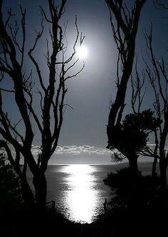 .Dark and dismal , yet beautiful