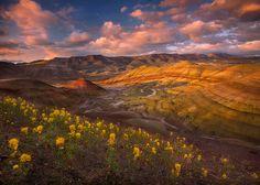 Marc Adamus - Painted Hills Oregon